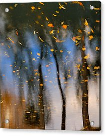Autumn Daze - Abstract Reflection Acrylic Print