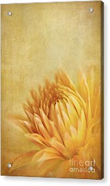 Autumn Delight Acrylic Print by Beve Brown-Clark Photography