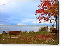 Autumn Acrylic Print by Dipali S
