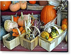 Autumn Display Acrylic Print by Frozen in Time Fine Art Photography