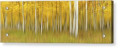 Autumn Dream Acrylic Print by Mei Xu