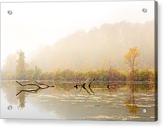Autumn Dream Acrylic Print
