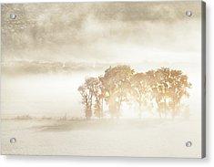 Autumn Dreams Acrylic Print by John Fan