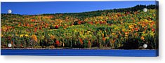 Autumn Eagle Lake, Acadia National Acrylic Print by Panoramic Images
