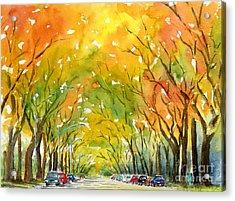 Autumn Elms Acrylic Print