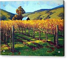 Autumn Evening Napa Acrylic Print