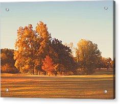 Autumn Evening On The Golf Course Acrylic Print by Ann Powell