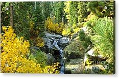 Autumn Fall Acrylic Print