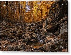 Autumn Falls Acrylic Print