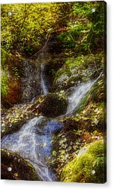 Autumn Falls Acrylic Print by Melanie Lankford Photography