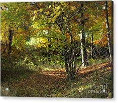 Autumn Feeling Acrylic Print by Lutz Baar