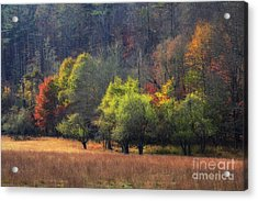 Autumn Field Acrylic Print