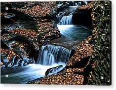 Autumn Flows Forth Acrylic Print by Frozen in Time Fine Art Photography
