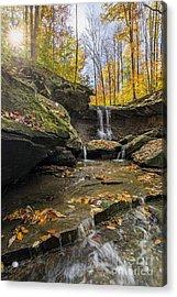 Autumn Flows Acrylic Print by James Dean