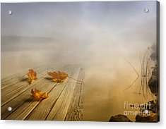 Autumn Fog Acrylic Print by Veikko Suikkanen