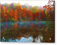 Autumn Foliage Acrylic Print by Lanjee Chee