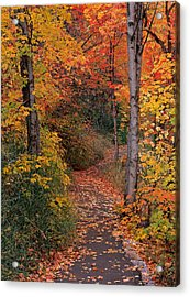 Autumn Foot Path Acrylic Print by Leland D Howard