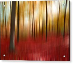 Autumn Forest Acrylic Print by Angela Bruno