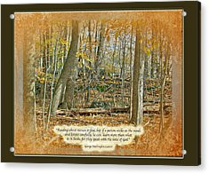 Autumn Forest - George Washington Carver Quote Acrylic Print by Mother Nature