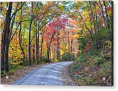 Autumn Forest Trail Acrylic Print by Bob Jackson