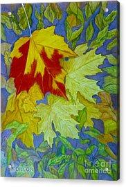 Autumn Acrylic Print by Frances  Dillon