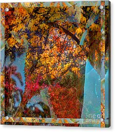 Autumn Fusion 5 Acrylic Print by Jeff Breiman