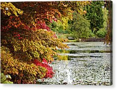 Acrylic Print featuring the photograph Autumn Glory By The Pond by Maria Janicki