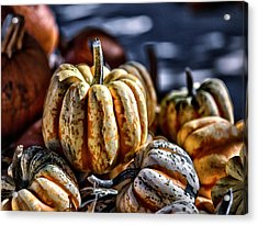 Autumn Glow Acrylic Print by Caitlyn  Grasso
