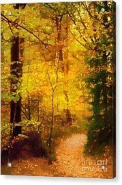 Autumn Glow Acrylic Print by Lutz Baar