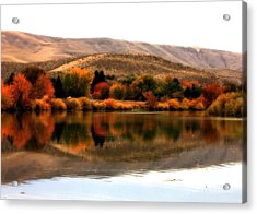 Autumn Glow On The Yakima River Acrylic Print by Carol Groenen
