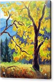 Autumn Gold Yosemite Valley Acrylic Print by Karin  Leonard