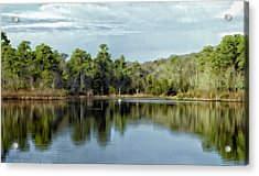 Acrylic Print featuring the photograph Autumn Green Photo Art by Constantine Gregory