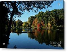 Autumn Grotto Acrylic Print