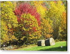 Autumn Hay Being Harvested In Maine Acrylic Print by Keith Webber Jr