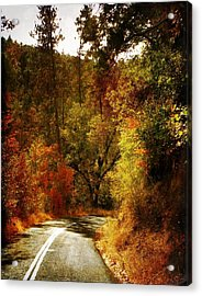 Autumn Highway Acrylic Print by Leah Moore