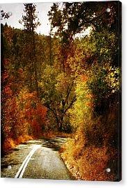 Autumn Highway Acrylic Print