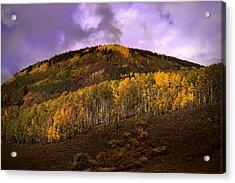 Acrylic Print featuring the photograph Autumn Hillside by Ellen Heaverlo