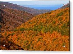 Autumn Hillsides At Cape Breton National Park Acrylic Print