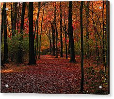 Acrylic Print featuring the photograph Autumn IIi by Raymond Salani III