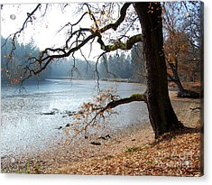 Autumn Impressions 3 Acrylic Print