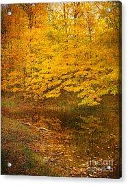 Autumn Impressions Acrylic Print by Kathi Mirto