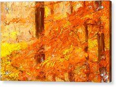 Autumn Impressions Acrylic Print by Lourry Legarde