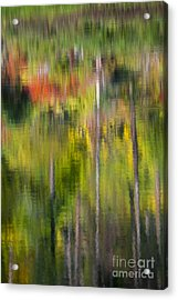 Autumn Impressions Acrylic Print by Mike  Dawson