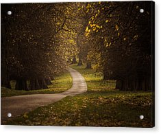 Autumn In Calke Abbey Acrylic Print