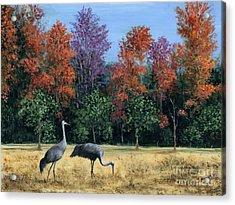 Autumn In Florida Acrylic Print by Marilyn Dunlap