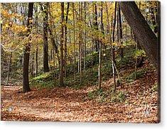 Autumn In Grant Park 4 Acrylic Print