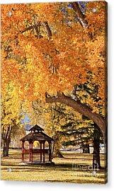 Autumn In La Veta Acrylic Print by Pattie Calfy