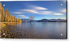 Autumn In Lake Wanaka Acrylic Print