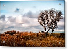 Autumn In Maine Acrylic Print by Bob Orsillo
