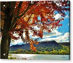 Autumn In Minnesota Acrylic Print